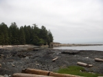 Beach Along the Strait of San Juan de Fuca, Vancouver Island
