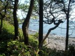Hiking Along the Strait of San Juan de Fuca, Vancouver Island