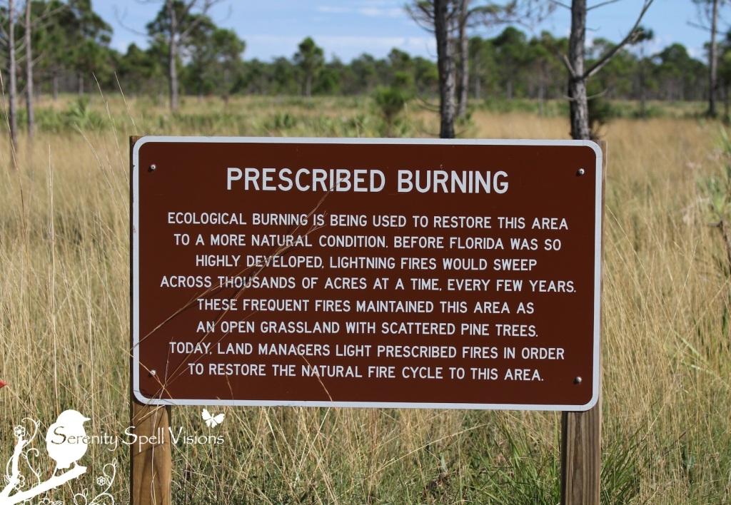 Prescribed Burning Signage, Atlantic Ridge Preserve State Park