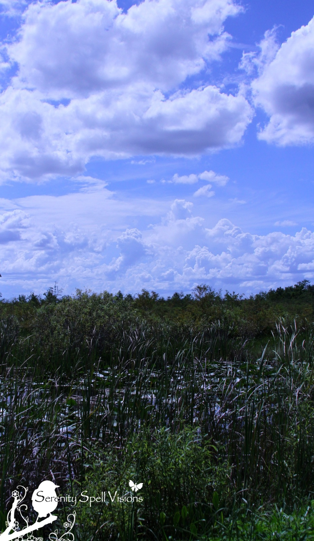 Arthur R. Marshall Loxahatchee National Wildlife Refuge