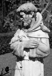 St. Francis watches over the critters in the gardens of the Ancient Spanish Monastery in Miami